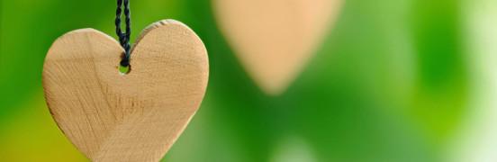 Puust süda