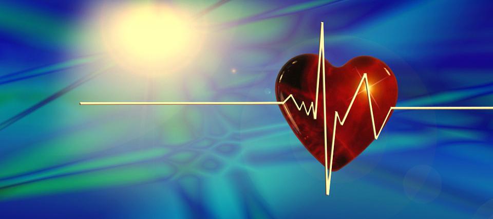 südame tarkus