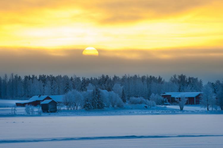 talvine pööripäev
